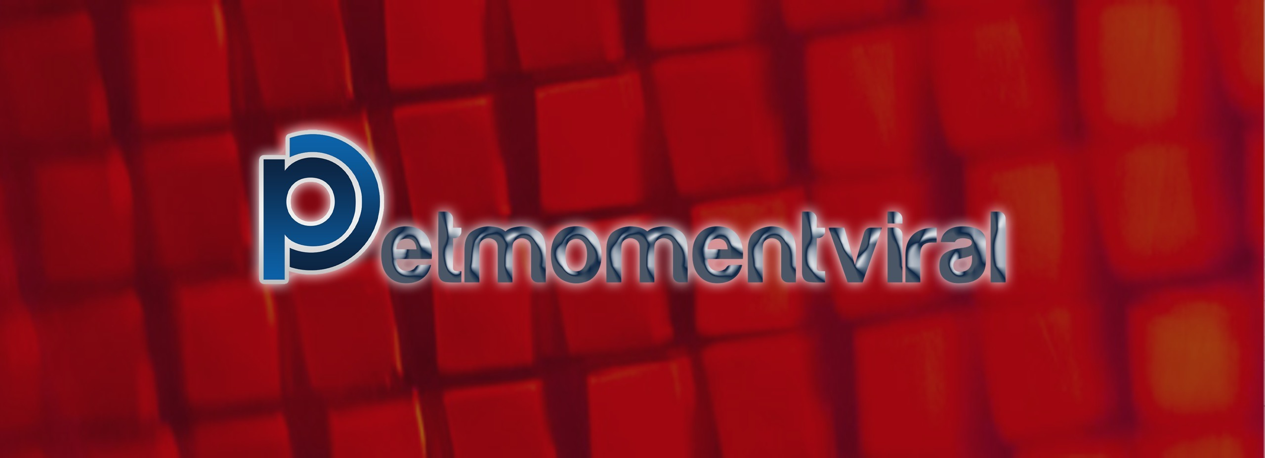 (@petmomentviral) Cover Image