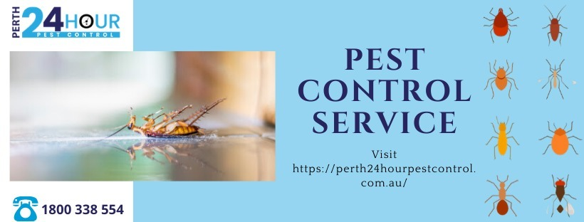 Best Pest Control Perth (@perth24hourpestcontrol) Cover Image
