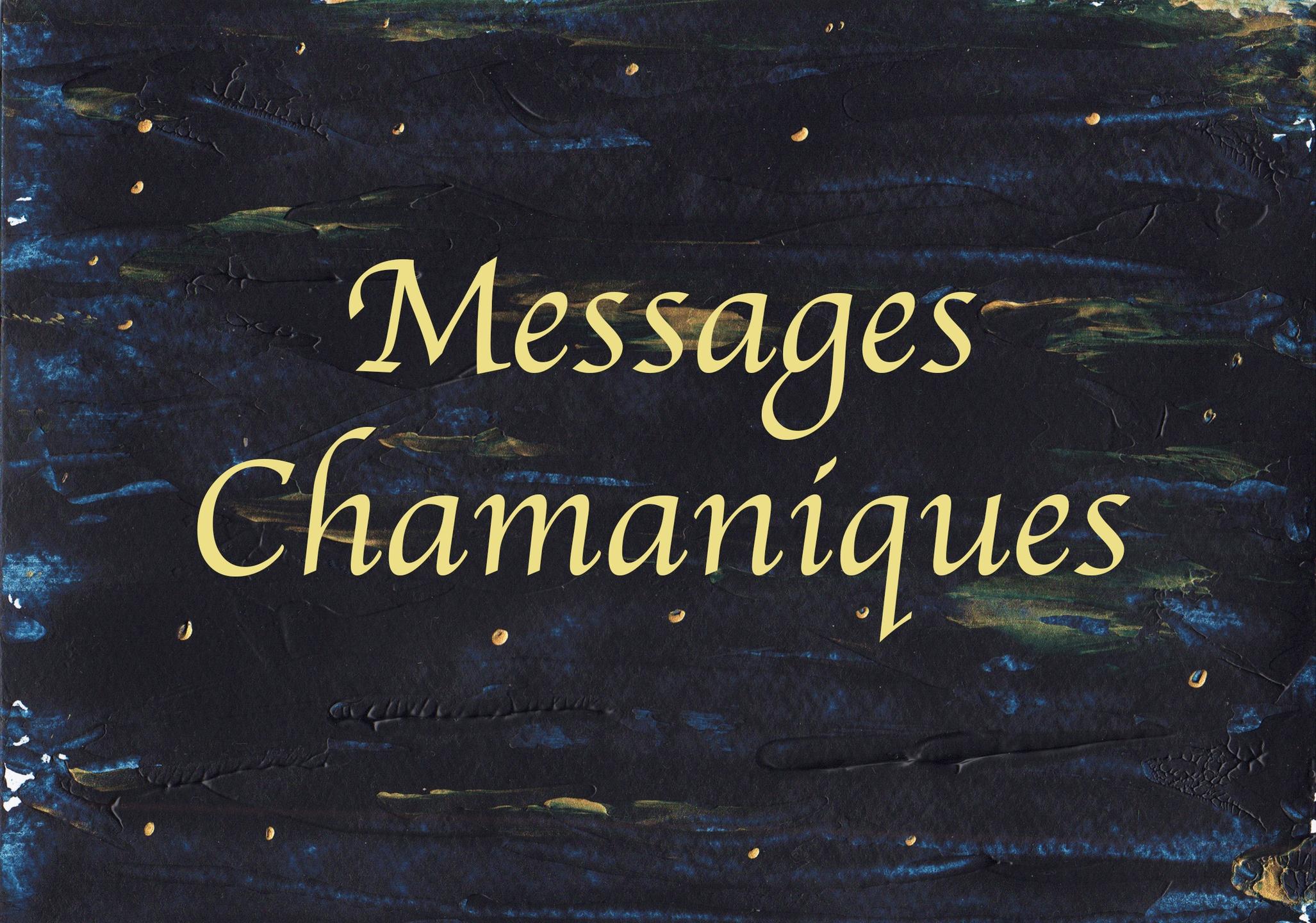 Valérie Bouzon-Langlois (@messageschamaniques) Cover Image