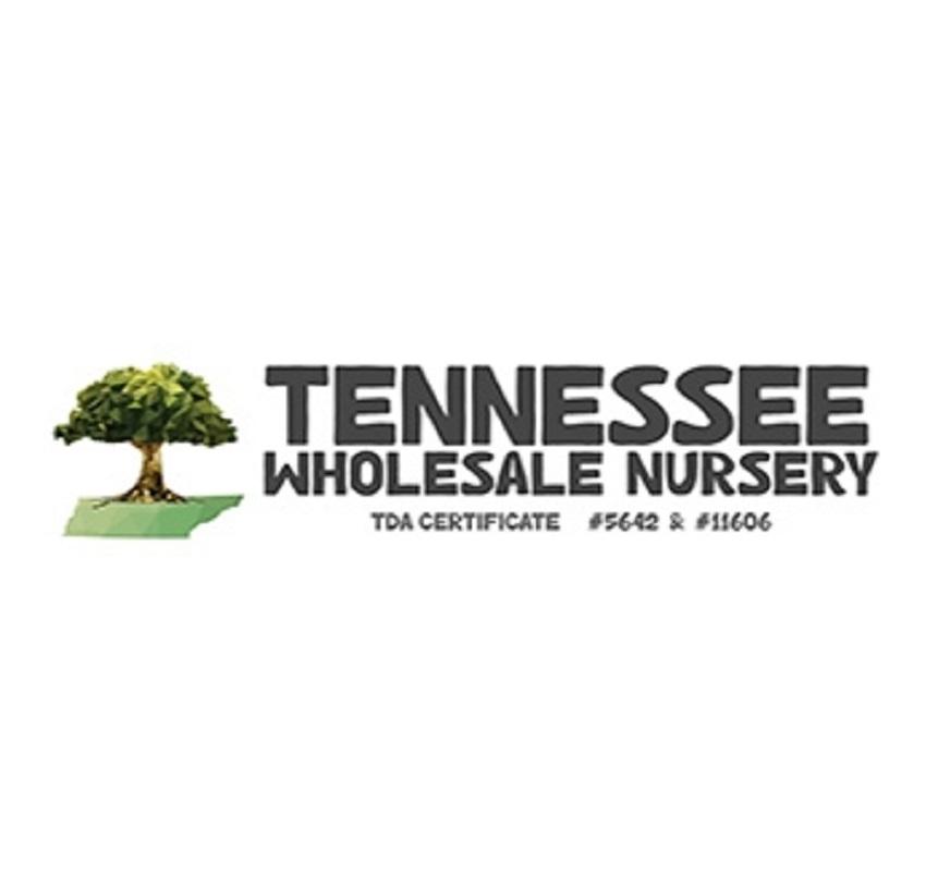Tennessee Wholesale Nursery (@tennesseewholesale) Cover Image