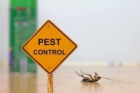 Pest Control Redland Bay (@pestcontrolse) Cover Image