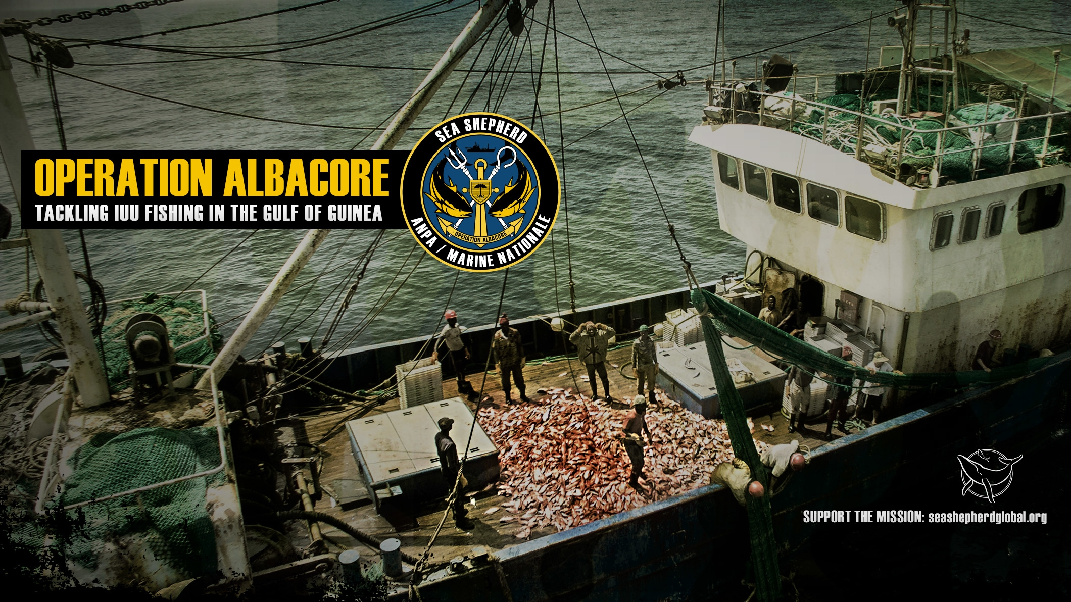 Sea Shepherd  (@seashepherd) Cover Image