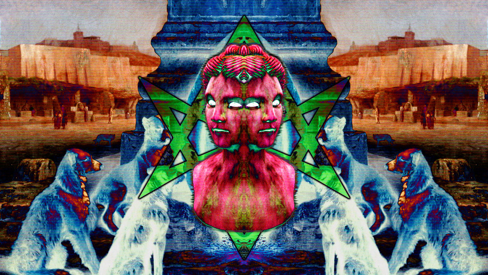 Ailurus (@versacehologram) Cover Image