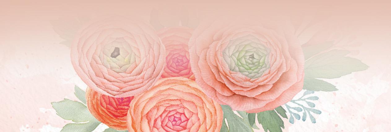 Desiree (@born2illustrate) Cover Image